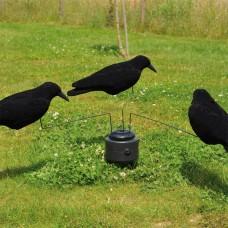 Rotary crow machine