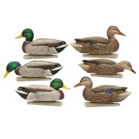 Avian-X Floating Mallard Greenhead Drake, Hen Duck Pro Grade Decoys