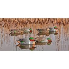Avian-X Top Flight Green Winged Teal Duck Decoys - 6 Pack