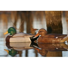 Storm Front™2 Classic Floater Mallard - 12-Pack