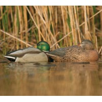 Мюрета спяща зеленоглава патица GHG - чифт