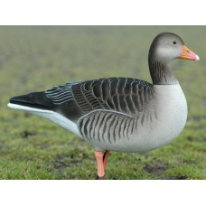 DKwai Greylag Goose decoy set 6 pieces full body