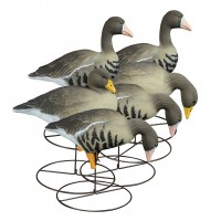 Higdon Decoys Full-Size Full-Body Specklebelly Variety 6 Pack
