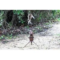 Подвижна примамка за хищници MOJO Critter